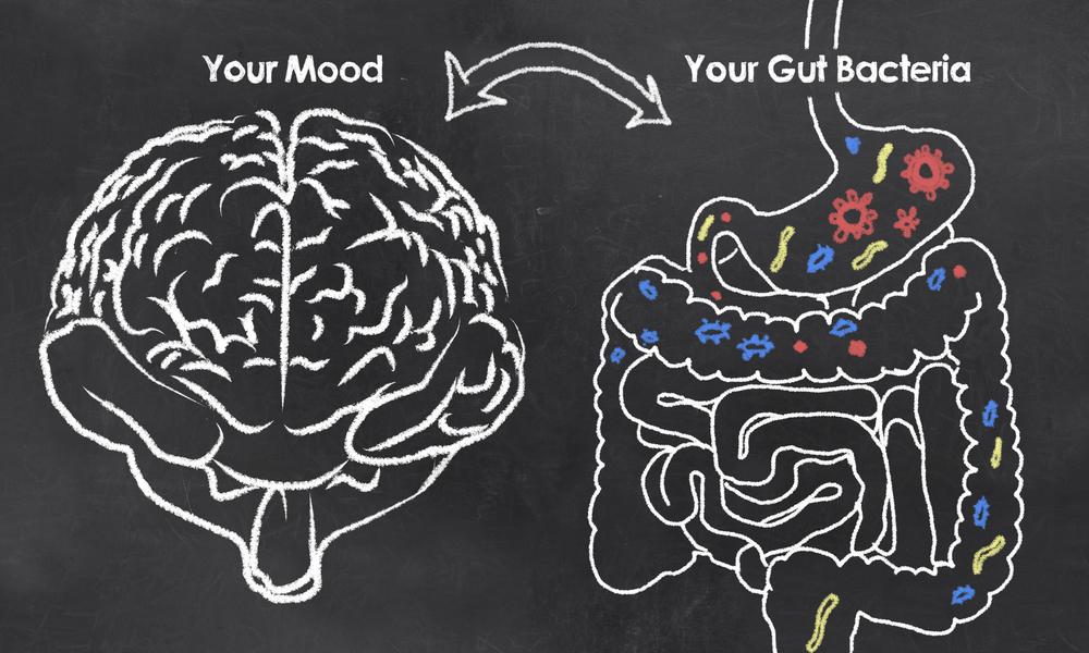 What you need to know for brain and gut health